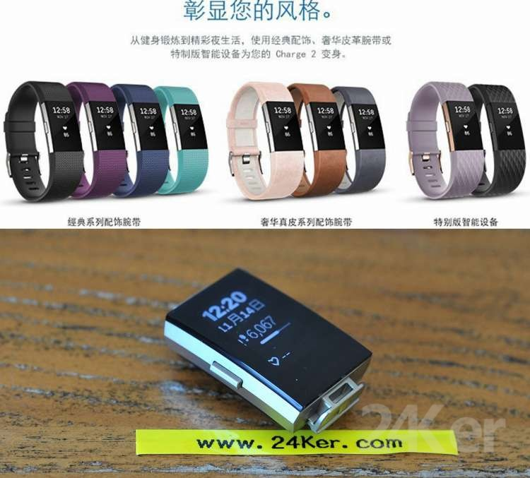 Fitbit Charge2 (72)_副本